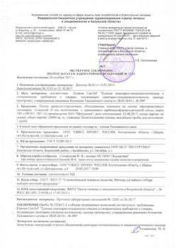 Заключение 12565 ЛДСП_Страница_1